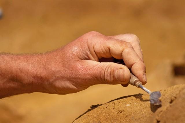 wssa-sand-carving-hand-close-up